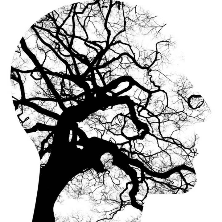 mental-health-2313430_1920-960x838